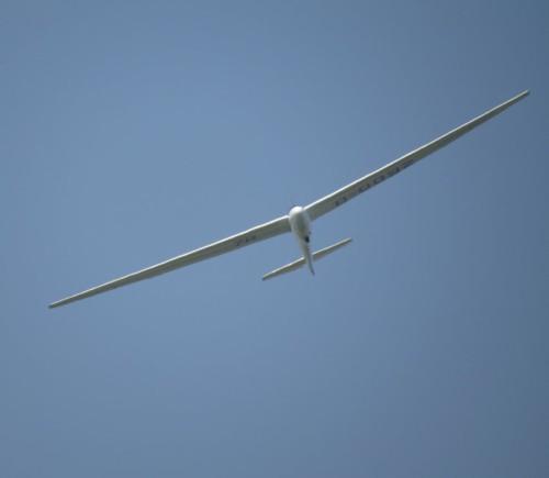 Glider - D-0092-02