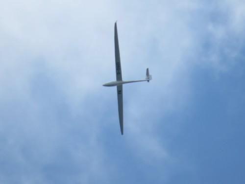 Glider - D-0601-01