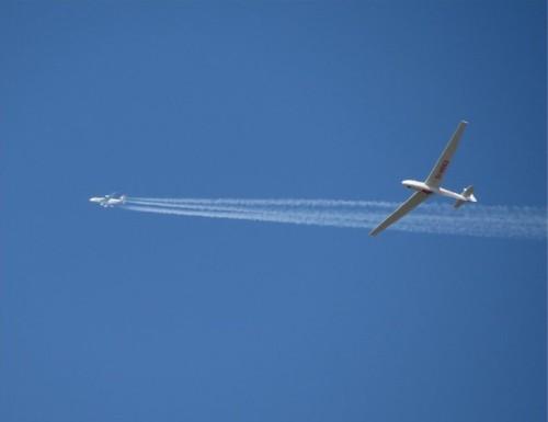 Glider - D-0663-03