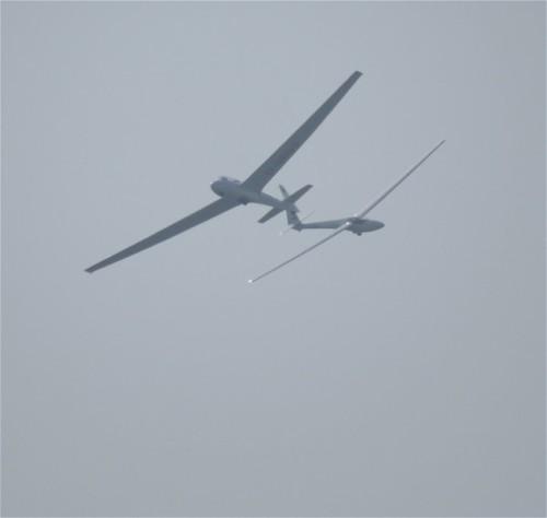 Glider - D-0663-06
