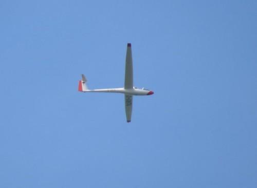 Glider - D-0874-01