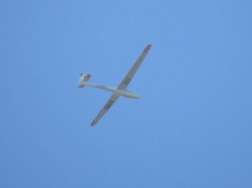 Glider - D-0913-01