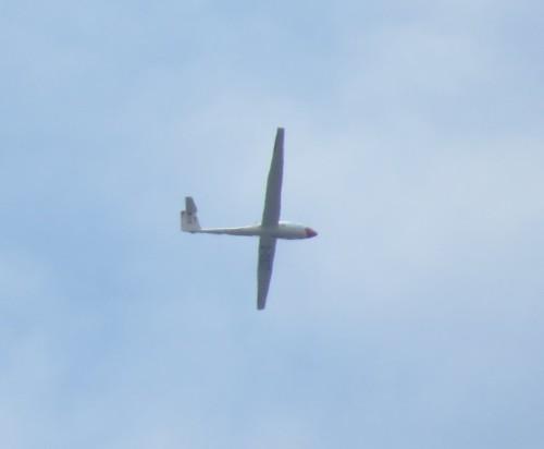 Glider - D-0927-01
