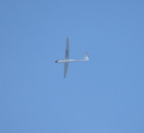 Glider - D-0967-01