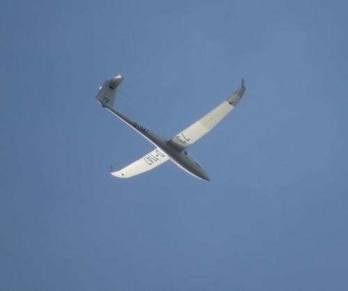 Glider - D-1147-02