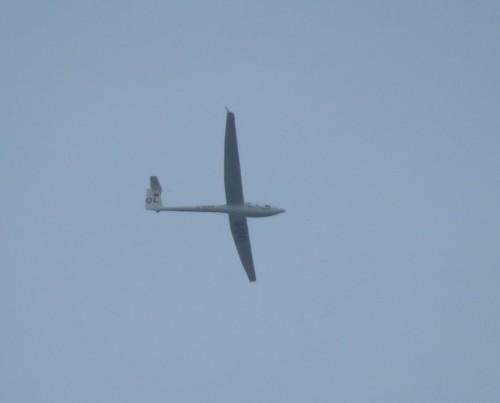 Glider - D-1243-01