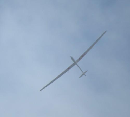 Glider - D-1257-02