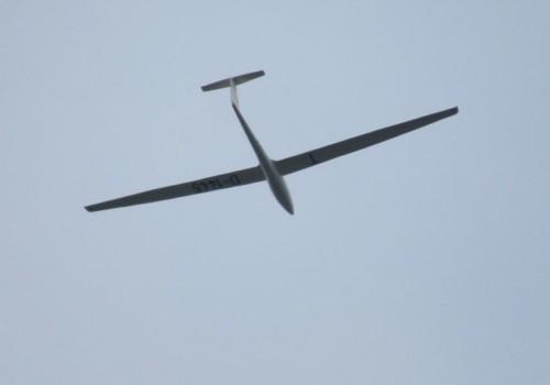 Glider - D-1445-01