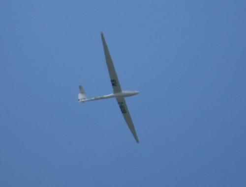 Glider - D-1698-01
