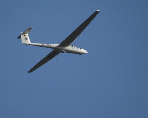 Glider - D-1721-10