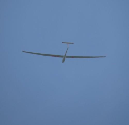 Glider - D-1897-01