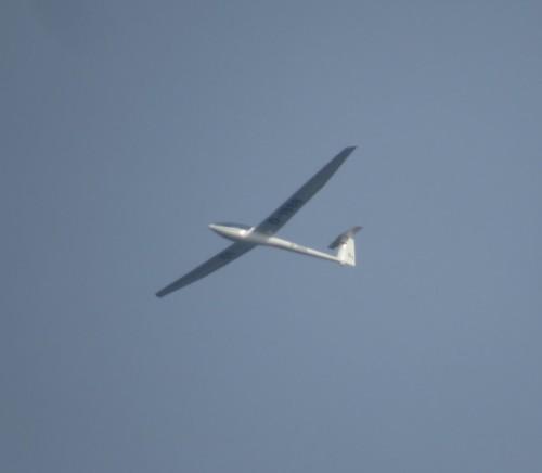 Glider - D-1980-01