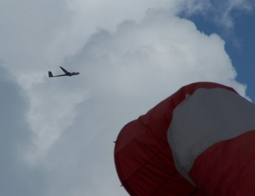 Glider - D-2249-01