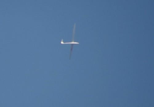 Glider - D-2403-01