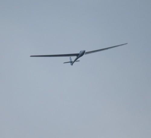 Glider - D-2413-02