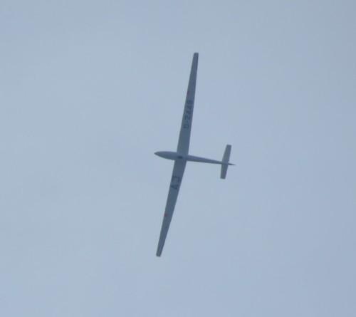 Glider - D-2448-01