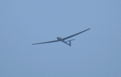 Glider - D-2564-01