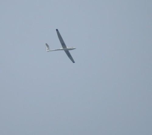Glider - D-2648-01