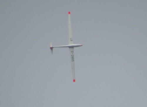 Glider - D-2865-01