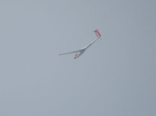 Glider - D-2865-02