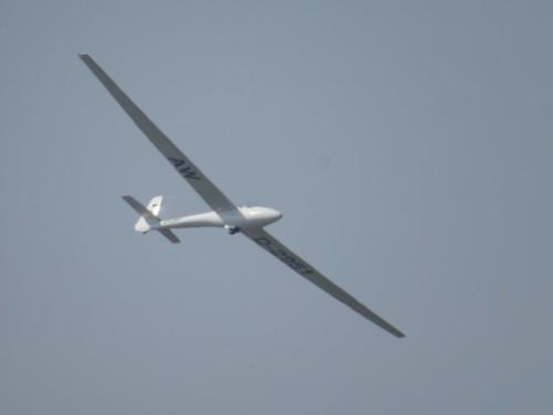 Glider - D-2951-02