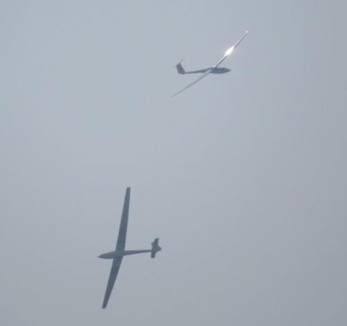 Glider - D-2951-03