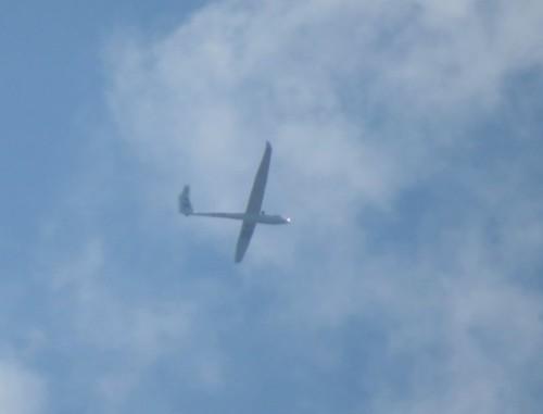 Glider - D-3397-01