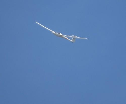 Glider - D-3403-01