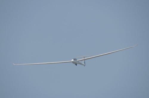 Glider - D-3483-02