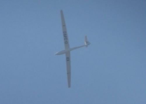 Glider - D-3493-01