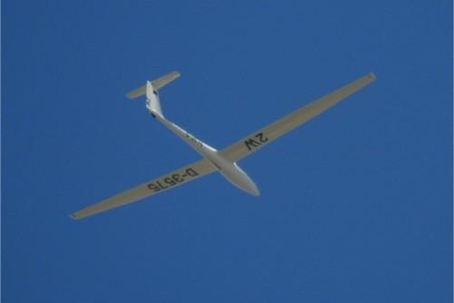 Glider - D-3575-01