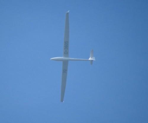 Glider - D-3605-01