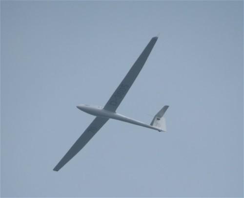 Glider - D-3605-02