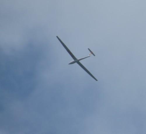 Glider - D-3672-01