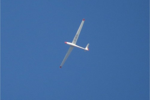Glider - D-3935-01