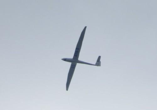 Glider - D-4114-01