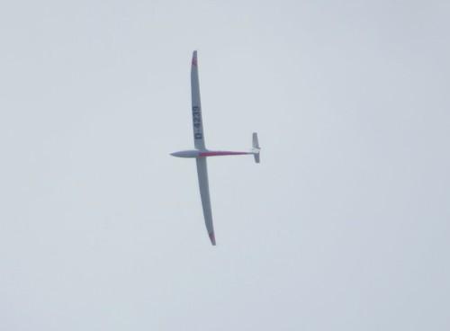 Glider - D-4239-01