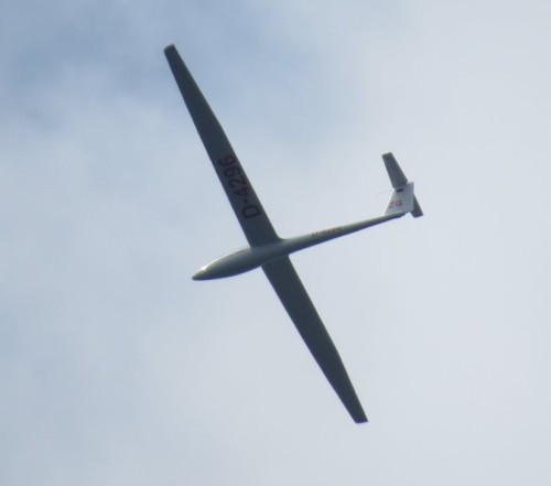 Glider - D-4296-01