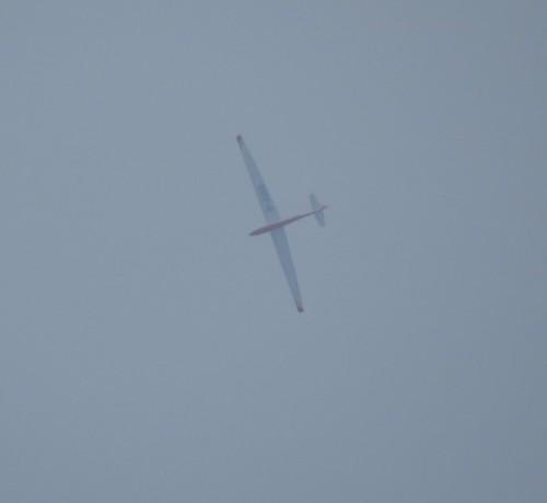 Glider - D-4388-01