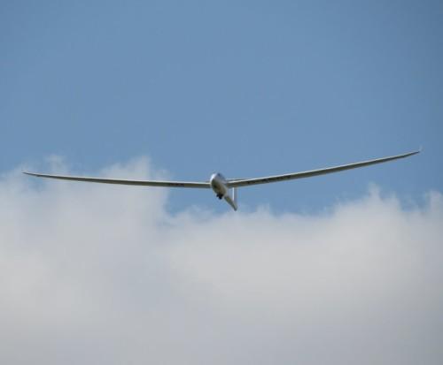 Glider - D-4507-06