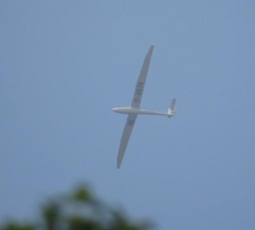 Glider - D-4574-02