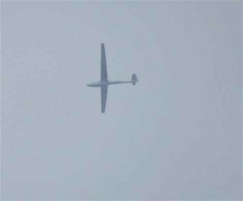 Glider - D-4711-01