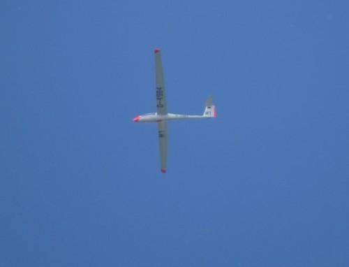 Glider - D-4984-01