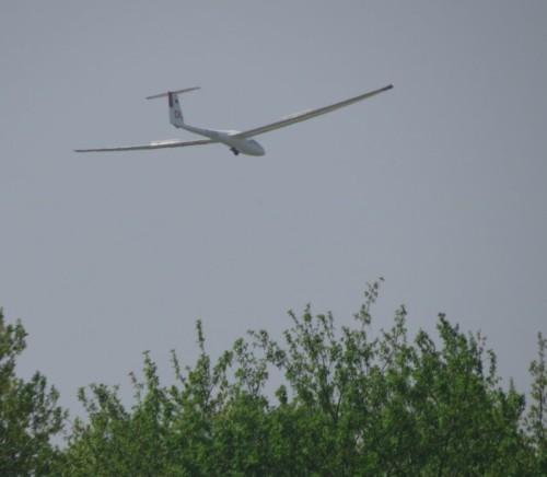 Glider - D-5008-03