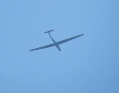 Glider - D-5074-01