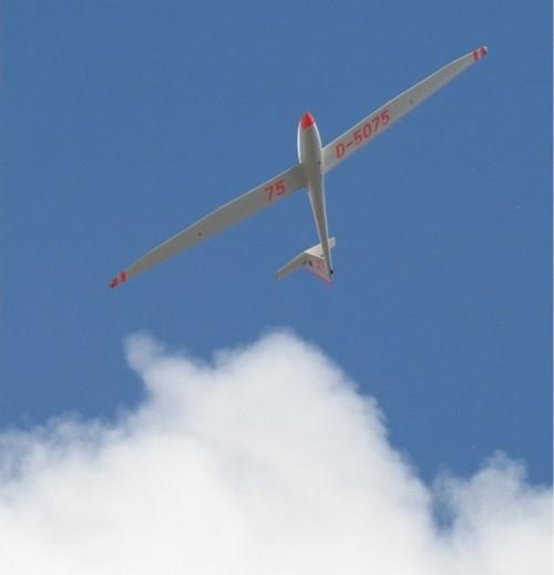 Glider - D-5075-01
