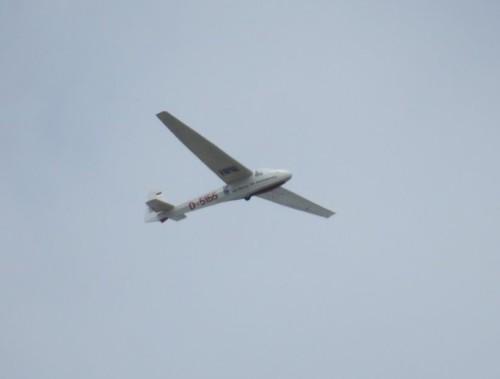 Glider - D-5155-01