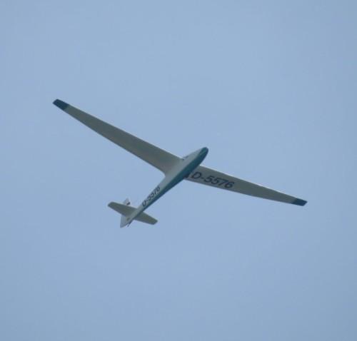 Glider - D-5576-02