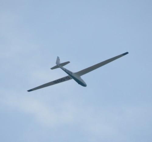 Glider - D-5576-03
