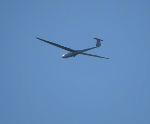 Glider - D-5756-02